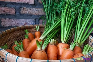 carrot huu co - medifood