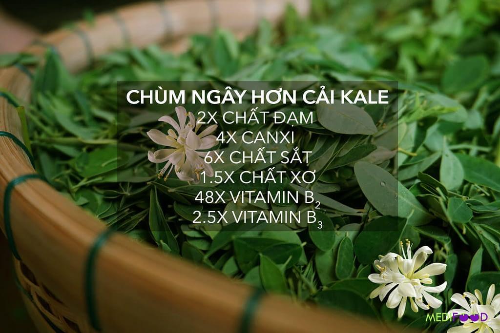chum ngay vs kale advantage