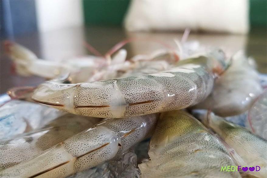 MEDIFOOD.IO bioshrimp - 1