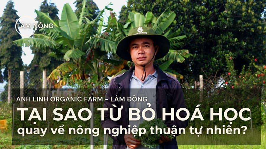 medifood partner farm - anh linh
